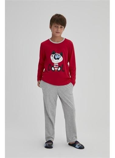 Dagi Kirmizi Erkek Çocuk Pamuklu Kedi Baskili Uzun Kol Pijama Takimi Kırmızı
